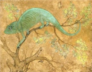 Mansur, A Chameleon, Mughal, Jehangir Period, c. 1600 Collection: Royal Library, Windsor Castle